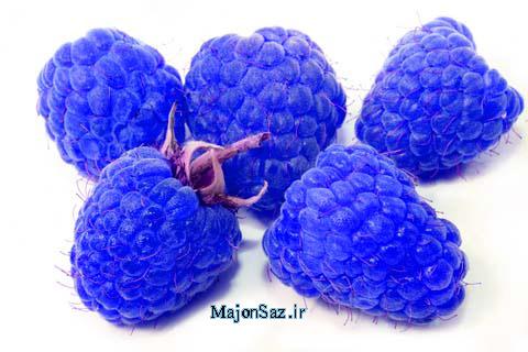 میوه های آبی و بنفش
