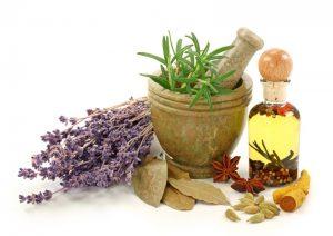 گیاهان دارویی معجون ساز