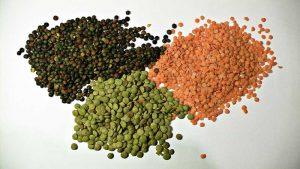 خواص انواع عدس types_of_lentil