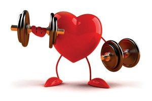 عضله قلب